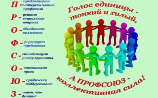 Задачи решаемые профсоюзной организацией